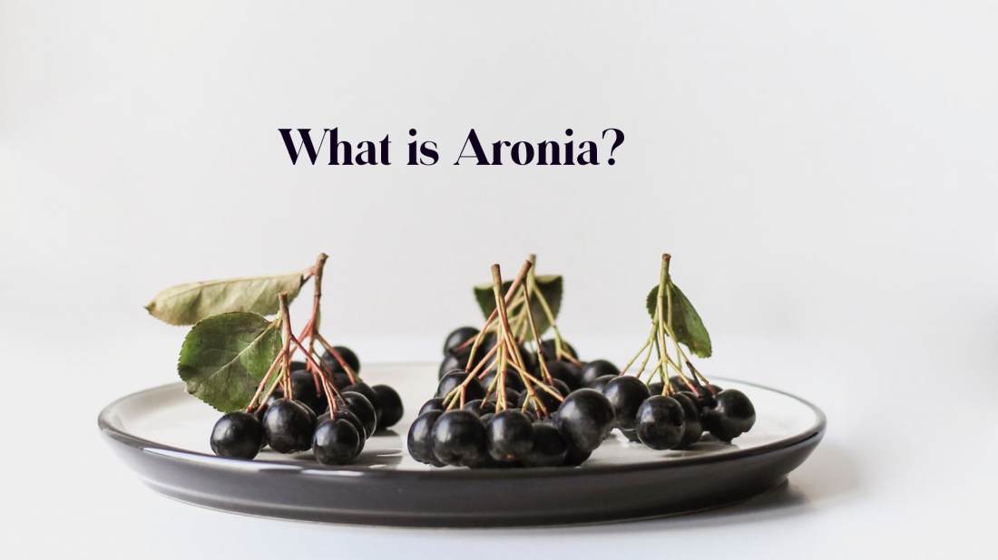 The Super Berry Aronia